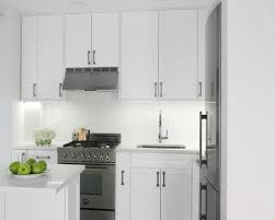 traditional kitchen by spectra design build