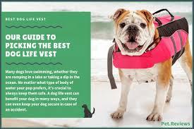 7 Best Dog Life Vests 2019 Reviews Keep Your Dog Safe