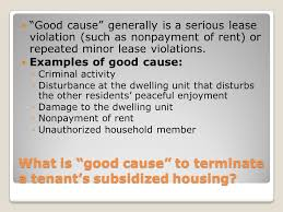 Lease Violations The Rights Of Families And Youth Living In Rental Housing In