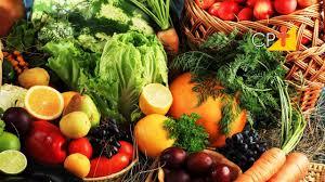 Curso Cultivo de Hortaliças Orgânicas