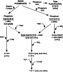 Phosphate Colour Chart Understanding Phosphorus Fertilizers Umn Extension