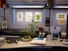 office cubicle decoration ideas. office cubicle decorating ideas decoration