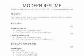 Resume Sample Doc Mesmerizing Professional Resume Samples Doc Beautiful Formal Resume Example