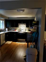 Zebra Wood Veneer Kitchen Cabinets Kitchen Appliances Tips And Review