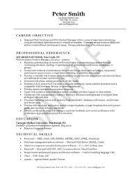 Web Developer Resume Example Career Objective Professional