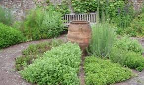 Small Picture Herb Garden Designs Plant Science News