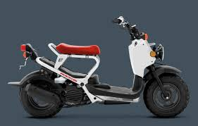 2018 honda warranty. modren warranty the 2018 honda ruckus will have main competition in mad dog from ice bear  with base price just under 2000 and ssr rowdy a bigger engine but  on honda warranty t
