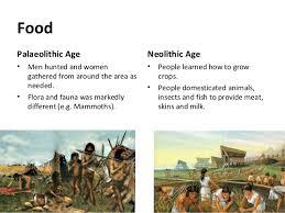 Neolithic And Paleolithic Venn Diagram Neolithic Revolution Lessons Tes Teach
