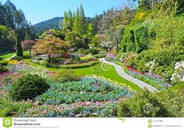 lawn and flower beds in the spring with lush colors victoria canada