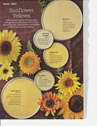 Bhg Paint Colors Yellow Paint Colors