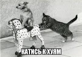 """Окуева о покушении: """"Сомнений нет - это российские спецслужбы. Путин и Кадыров заинтересованы в смерти Осмаева"""" - Цензор.НЕТ 8915"""
