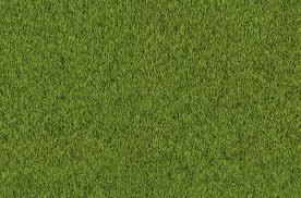 Dirt grass texture seamless Maps Free Tileable Grass Texture Download Freecreatives 16 Free Tileable Grass Texture Freecreatives