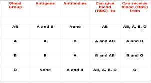 Abo Blood Type Chart Abo Blood Group Flow Chart Www Bedowntowndaytona Com