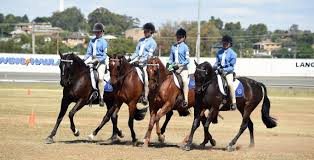 the pony club association of nsw club listing and locations the pony club association of nsw