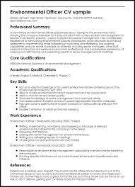 Summary Resume Example Summary For Resume Sample Emelcotest Com
