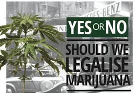 legalize marijuana pros and cons the harlem times legalize marijuana pros and cons