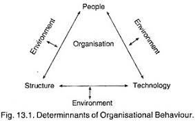 essay on organisational behaviour determinnants of organisational behaviour