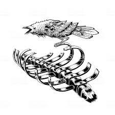 黒いカラスの鳥は肋骨の骨格に滞在しますカラスの鳥解剖学の芸術イラスト