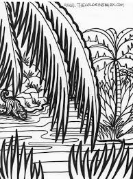 Jungle Scene Coloring Pages Pages Sheets