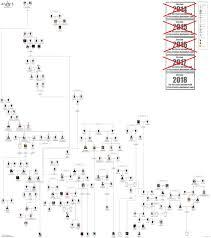 Ancestry Family Tree Chart Adam And Eve Family Tree Chart Bedowntowndaytona Com