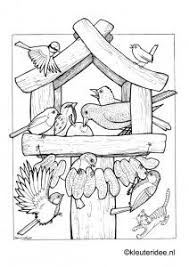 Small Picture Best 20 Feeding birds ideas on Pinterest Bird food For the
