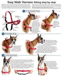 Details About Petsafe Dog Nylon Easy Walk Harness Reduce Pulling Petite Fawn And Brown