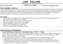 Resume Key Skills Examples Writing And Editing Services