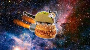 Cool Galaxy Cat Wallpapers - Top Free ...