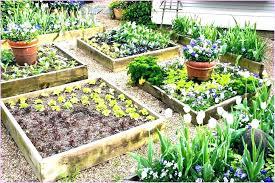 raised bed garden layout plans vegetable design gardens
