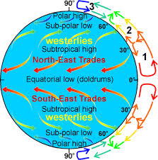 Global Wind Patterns Beauteous Global Wind Patterns Winds Are Named By The Direction From Which