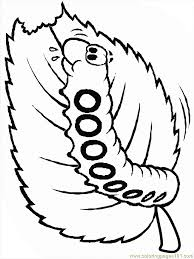 Small Picture Caterpillar Coloring Page Perfect Animals Coloring Pages Gt