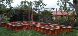 best wood for raised vegetable garden beds popular ve able design wooden treated pressure bed