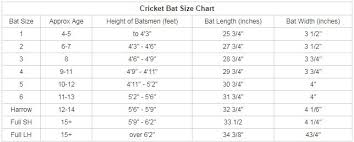 Cricket Bats Online India Store Best Quality And Prices