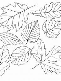 30 Kleurplaten Herfst Gratis Te Printen Topkleurplaatnl