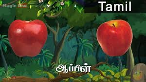 apple fruits in tamil pre school animated educational videos apple fruits in tamil pre school animated educational videos for kids