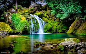 Beautiful Nature Wallpaper Quotes Best Of Most Beautiful Nature Wallpaper Inspirational Quotes Nature