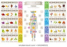 1000 Infographics Minerals And Vitamins Stock Images