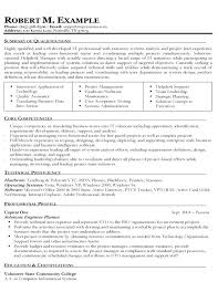 Example Of Targeted Resume It Solutions Engineering Sample Targeted