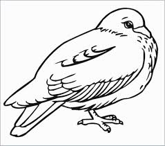 Coloring Pages Free Printable Bird Coloring Pages Adult Birds To