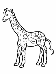 Small Picture Inspirational Giraffe Coloring Page 61 For Your Free Colouring