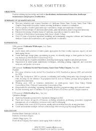 Resume Objectives For Government Jobs Resume Bank
