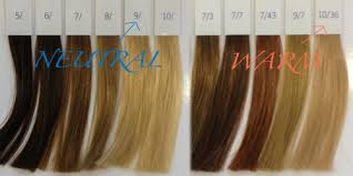 Wella Presentation Hair Color Book Coloring Pages