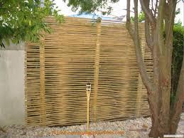 Bildergallery Bambus Sichtschutz