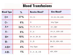 Baby Blood Type Chart Bauerles Blog Blood Types