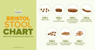 Bristol Stool Chart Diarrhea What Your Poop Reveals About You Paleohacks Blog