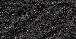 Почва структура состав свойства Почва