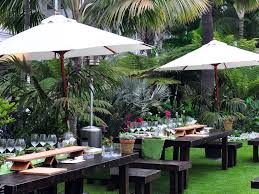 plant olive garden lubbock texas garden conservancy