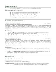 Sample Counseling Resume Sample Counselor Resume Enderrealtyparkco 8