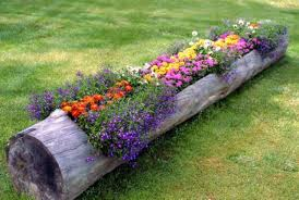 garden beds ideas. a hollowed log raised flower bed is super cool idea garden beds ideas