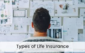 Life Insurance Types Comparison Chart 9 Different Types Of Life Insurance Explained